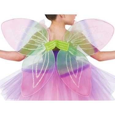 PINK/GREEN FAIRY WINGS